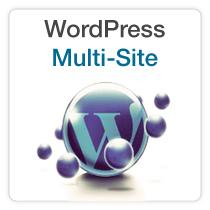 WordPress Multi-site Class