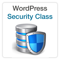 security training for wordpress websites